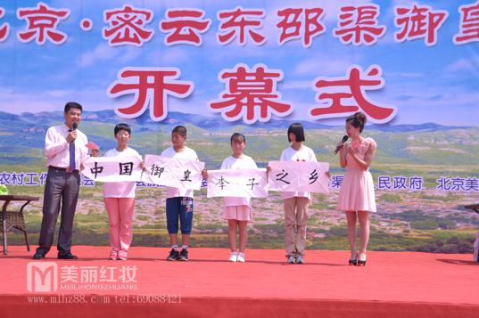 2013北京 密云东邵渠御皇李子节开幕式